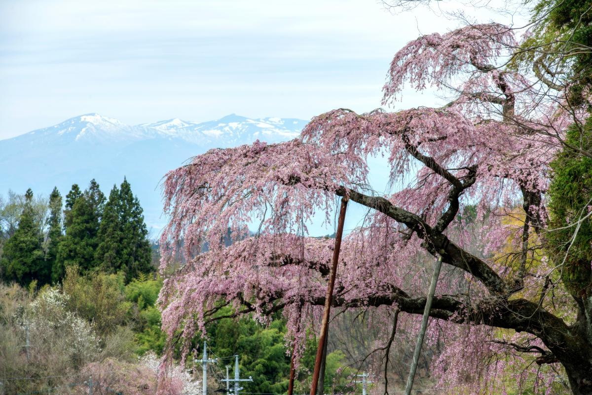神奈川県三浦半島のおすすめドローン撮影スポットをまとめてみました! | RyoheySmile