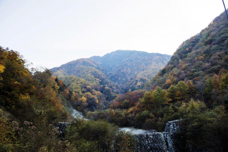 [ 北精進ヶ滝入口の吊橋の上から ]  砂防ダムと山の中腹に道路が見えます