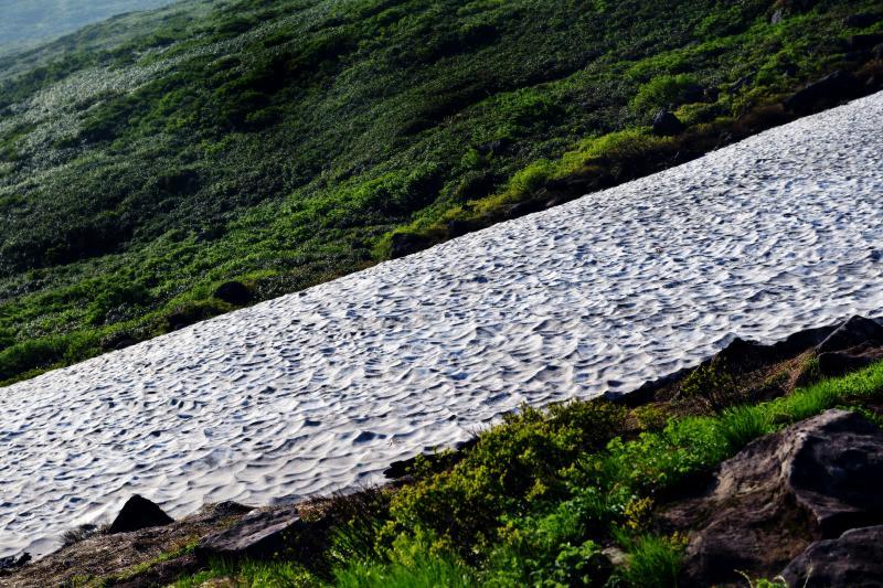 [ 波打つ雪渓 ]  雪渓が波のようになっています