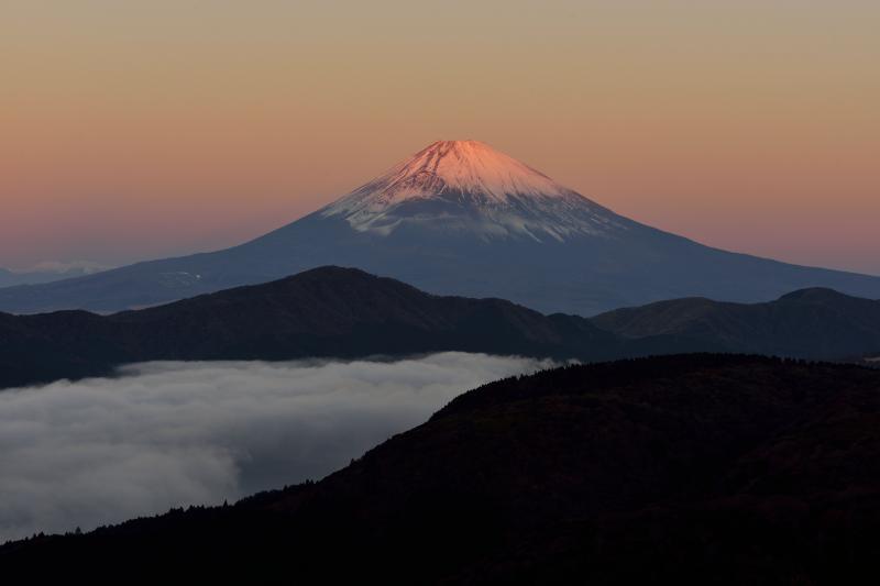 [ 朝日を浴びる富士山(大観山から) No2 ]  富士山と空がピンクに染まります
