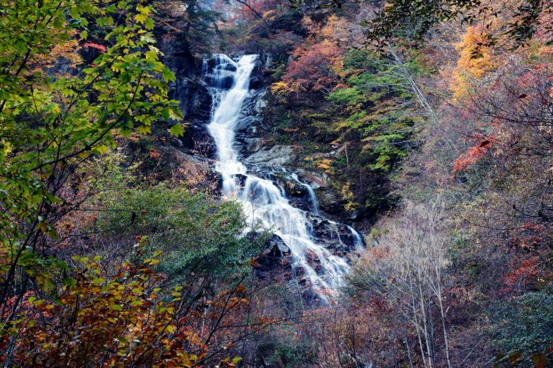 [ 北精進ヶ滝の下半分 ]  半分だけでも立派な滝です