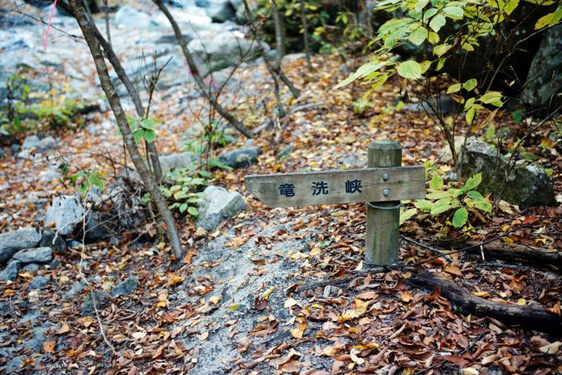 [ 竜洗峡 ]  渓谷らしくなってきます