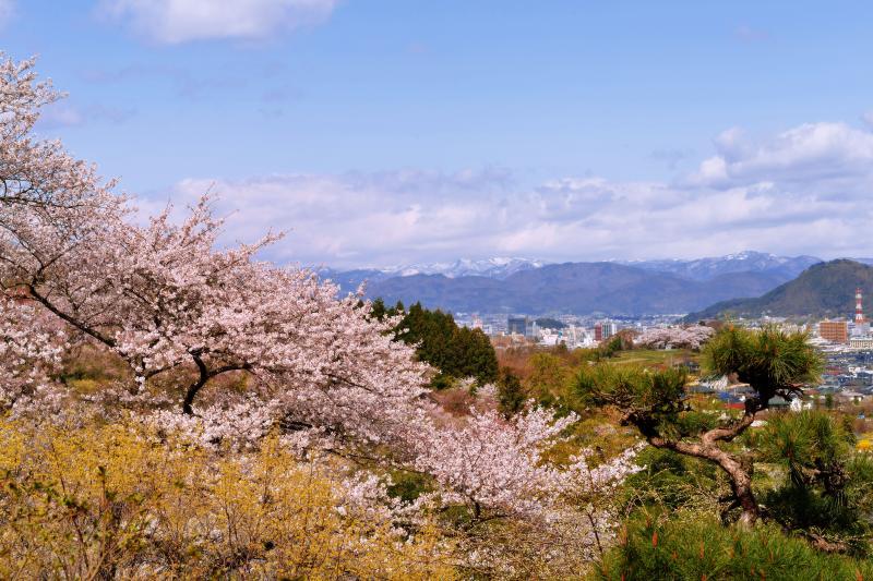[ 花見山からみた福島市街 ]  花見山からは福島市や吾妻連邦が見えます。
