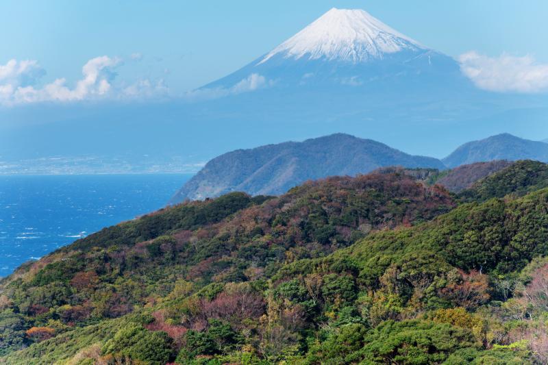 [ 空に浮かぶ富士 ]  富士山の前に雲が出て富士山が宙に浮いているようです