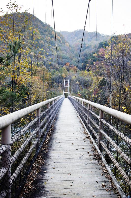 [ 長いつり橋 ]  作りが良いのであまり揺れません