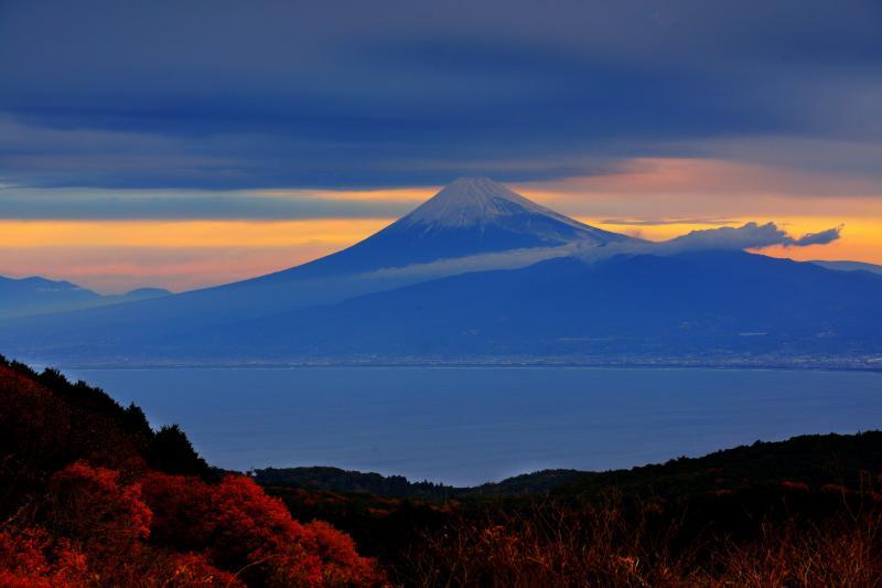 達磨山の紅葉と富士山 | 紅葉と駿河湾と富士山