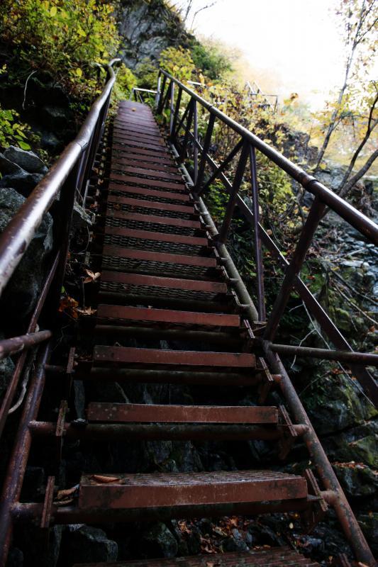 [ 急登階段を見上げて ]  急です。こんな階段があるとは・・・
