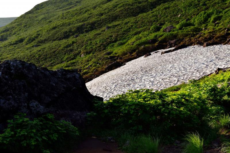 [ 雪渓に接近 ]  登山道の近くにも雪渓が現れます