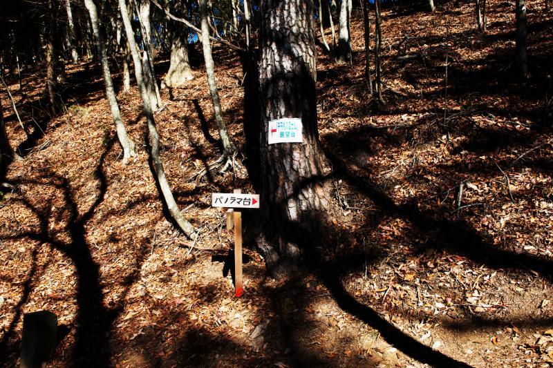 [ パノラマ台標識 ]  登山道をしばらく登ると分岐が現れます
