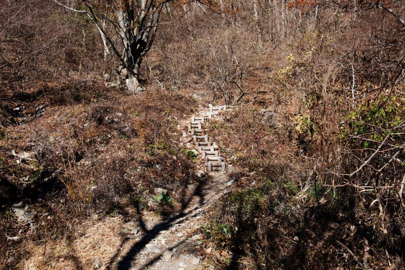 [ パノラマ台入口の階段 ]  いきなり急勾配です