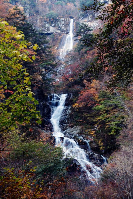 [ 北精進ヶ滝 秋景色 ]  下のほうが右にカーブしている滝です