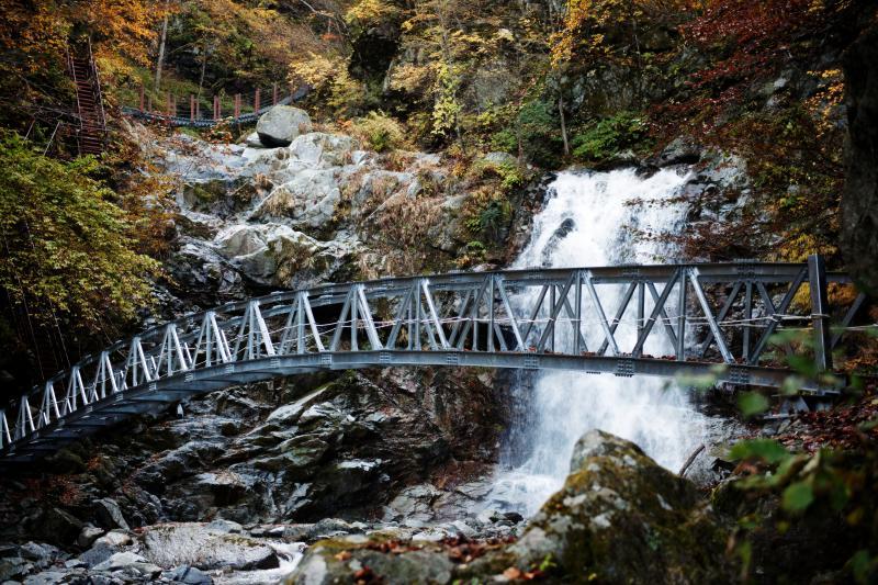 [ 滝のアスレチック ]  子供が喜びそうな橋と階段