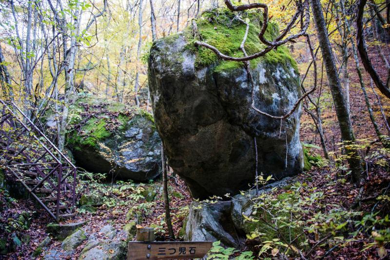[ 三つ児石 ]  巨大な石が遊歩道脇にあります