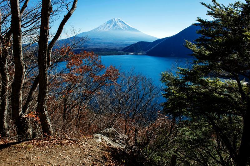 [ 本栖湖を見下ろして ]  パノラマ台に行く道の途中から見た本栖湖と富士山