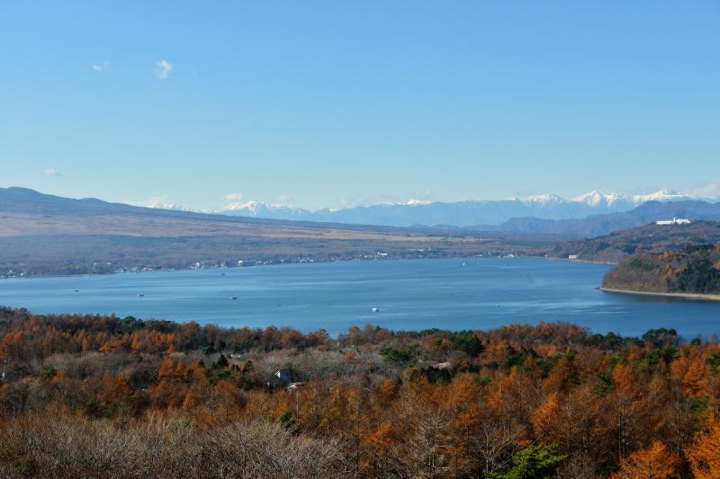 [ 山中湖と南アルプス ]  雪の南アルプスを一望