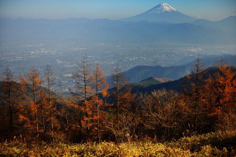 [ 甘利山の秋景色と富士山 No2 ]  甘利山の富士山撮影スポットからの眺望