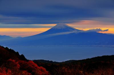 [ 達磨山の紅葉と富士山 ]  紅葉と駿河湾と富士山