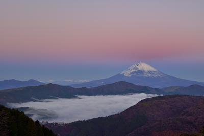 ピンク色に染まる空と富士山| 富士山の上の空がピンクに染まりました