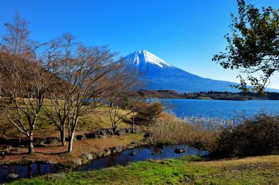 [ 田貫湖と富士山 ]  田貫湖に流れ込む川