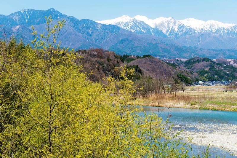 [ 天竜橋からの風景 ]  春には新緑・桜・美しい川・残雪の中央アルプスの姿を見ることができます。
