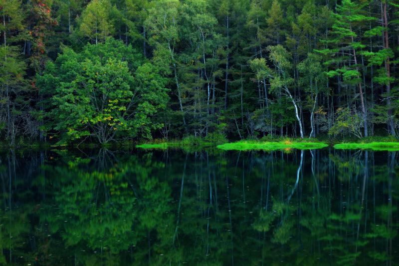 [ 初秋 ]  木々の葉が少しずつ色づいてきた御射鹿池湖畔。夕日が沈む頃、静寂さに包まれた池は神秘的。