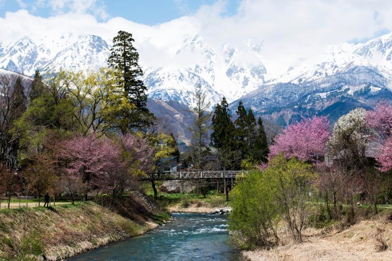[ 日本の原風景 ]  懐かしい田舎の風景が目の前に広がります。