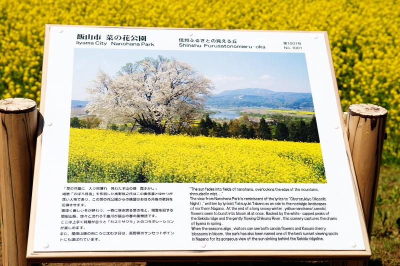 [ 飯山・菜の花公園の案内板 ]  4月の末頃には菜の花と桜が同時に楽しめるスポットです。