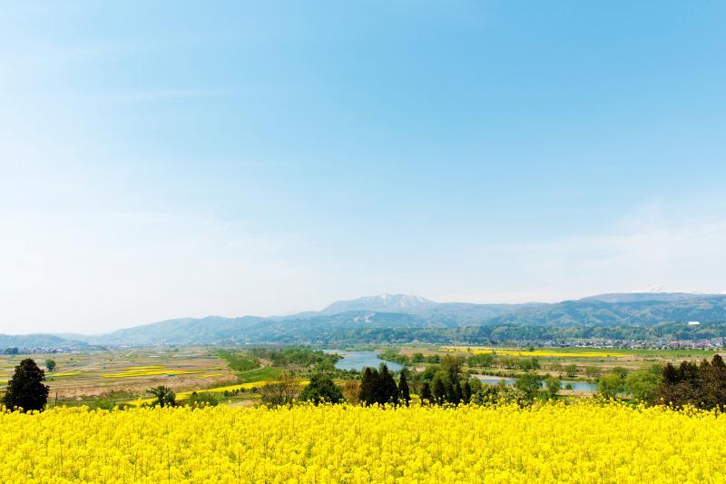 [ 飯山・菜の花公園からのパノラマ ]  広角で撮影しています。のどかな絶景が広がっています。