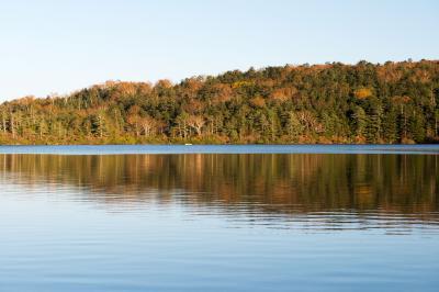 晩秋の白駒の池  紅葉が終わりかけて、いよいよ冬が訪れます。