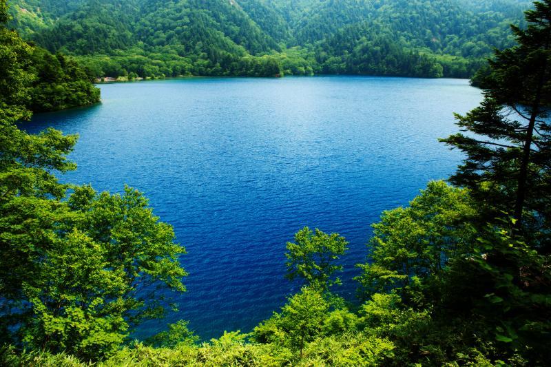 大沼池全景 | コバルトブルーの湖面が美しい。
