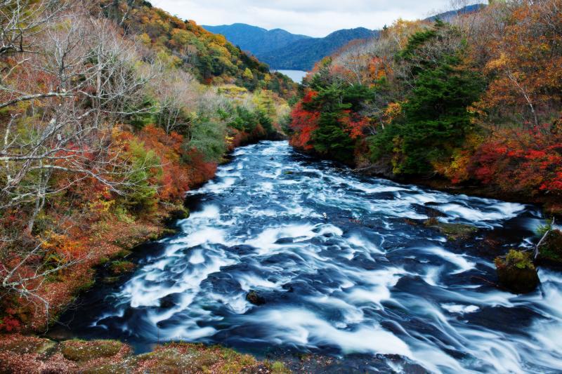 [ 竜頭の滝 紅葉(上流) ]  上流の橋の上からの眺望