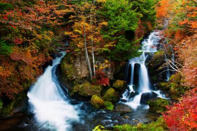 竜頭の滝 紅葉| 色鮮やかな紅葉に包まれた竜頭の滝です。