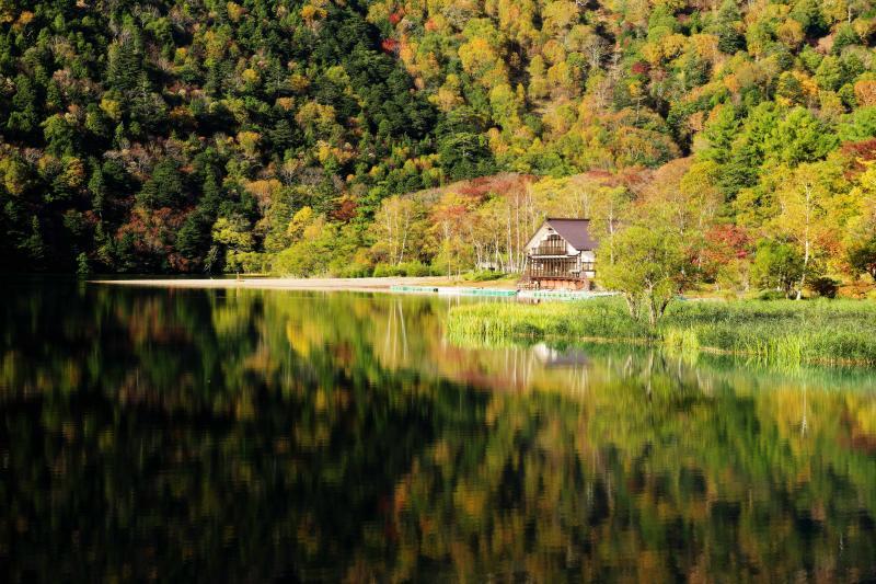 [ 彩られた湖畔 ]  湖を囲み覆い尽くすような紅葉。針葉樹の深い緑が錦秋の紅葉を引き立てます。