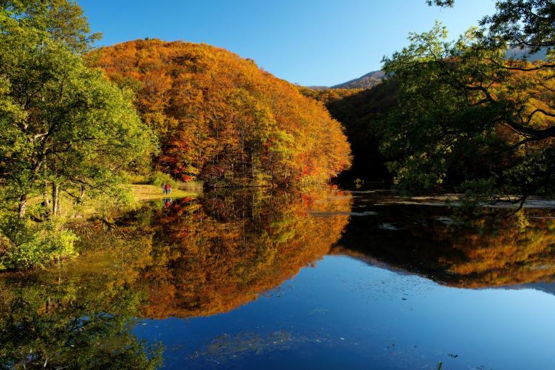 [ 曲沢沼・紅葉風景 ]  対岸の紅葉がとても美しいです。