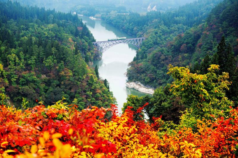 [ 第一只見川橋梁 ]  紅葉が始まった第一橋梁付近