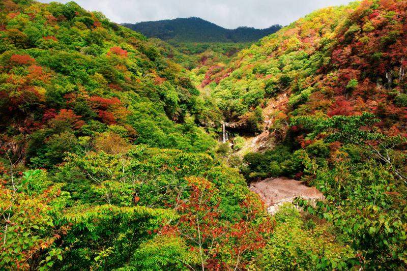 [ 般若滝と紅葉 ]  紅葉の綺麗な谷です。