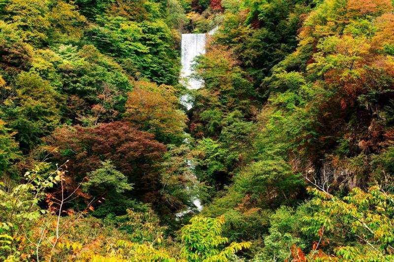 紅葉の方等滝 | 堰堤の下に滝があります。