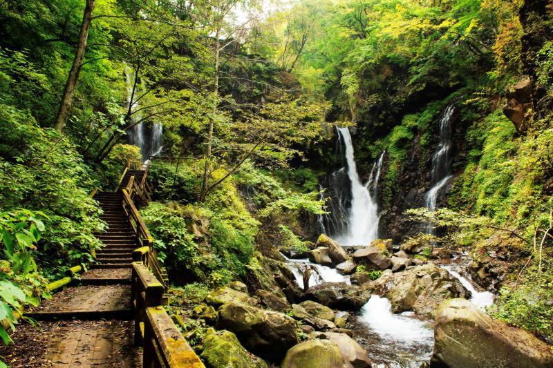 [ 裏見滝遊歩道 ]  滝の側まで木道が続きます。