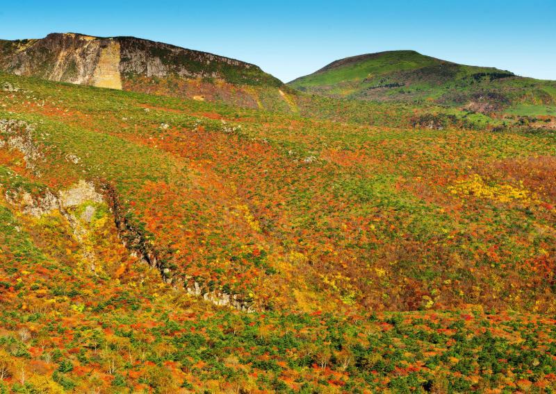 [ 絶壁と紅葉 ]  切り立った崖の迫力が凄いです。