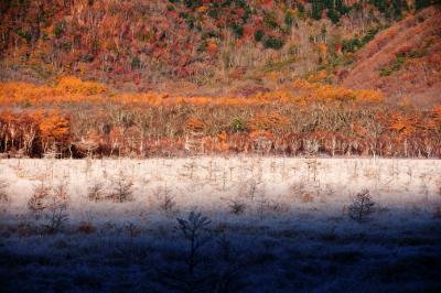 [ 夢の世界 ]  霧氷に覆われた草原とカラマツの紅葉。解け出した氷がキラキラ光る美しさ。夜明け時15分ほどの間、この風景を味わうことができました。