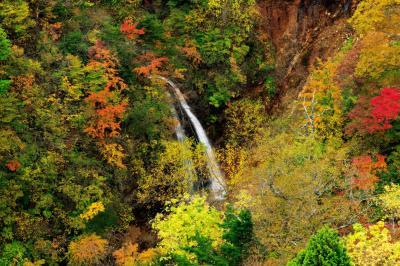 紅葉の不動沢滝| 落差15mほどの美滝。橋の上から俯瞰できる滝で、谷を埋め尽くす紅葉の中 白い布のような流れが綺麗。
