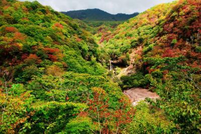 般若滝と紅葉| 紅葉の綺麗な谷です。