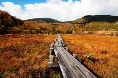 秋終| もうすぐ冬が訪れます。
