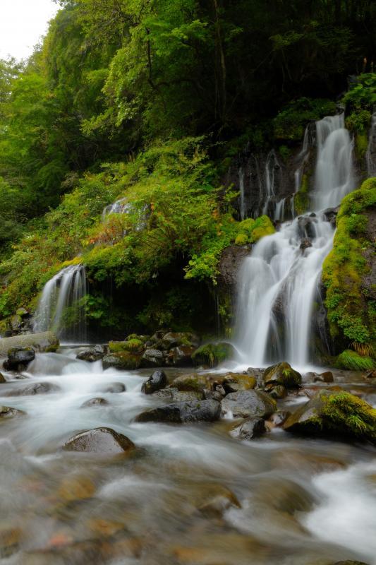 [ 渓流と滝 ]  渓流に流れ込む滝。縦の流れと横の流れが美しい滝です。