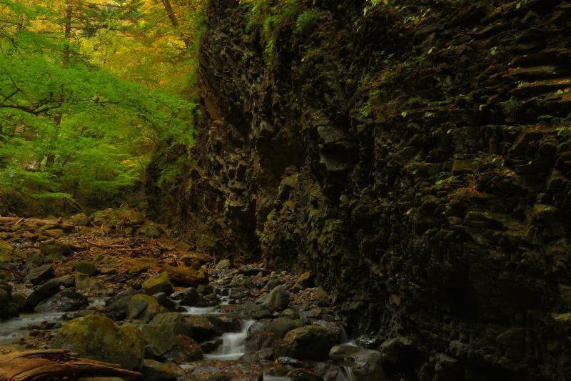 [ 垂直に切り断つ岩 ]  迫力のある岩が出てきます。黒い岩と木々のコントラストが美しい。