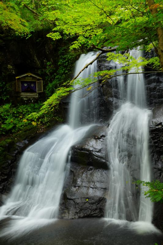 [ 上段滝 ]  3つの連続する滝の最上部。二つに分かれた流れはシンメトリー。滝の横には不動明王が祀られていました。