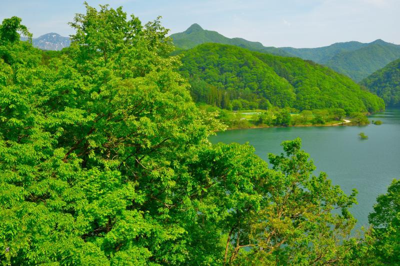 [ 藤原湖俯瞰 ]  両岸に道路があり、湖を俯瞰できる場所が幾つもありました。