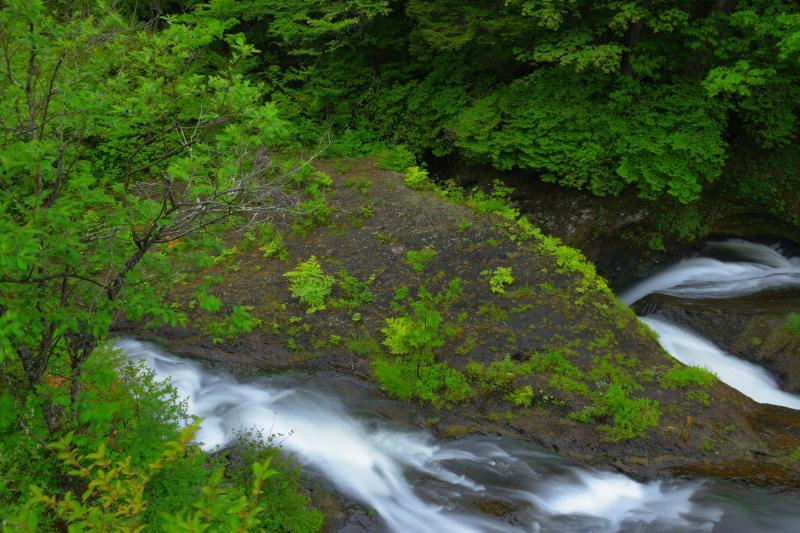 [ 竜頭渓流 ]  岩の削られた部分に水が吸い込まれていきます。竜頭の滝の中間部分は渓流美を楽しむことができます。