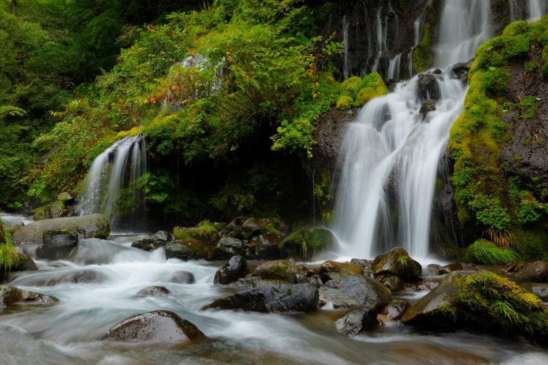 ふたつの滝 | 渓流に流れ込む2本の滝。伏流水のような優雅で繊細な流れを見ることができます。