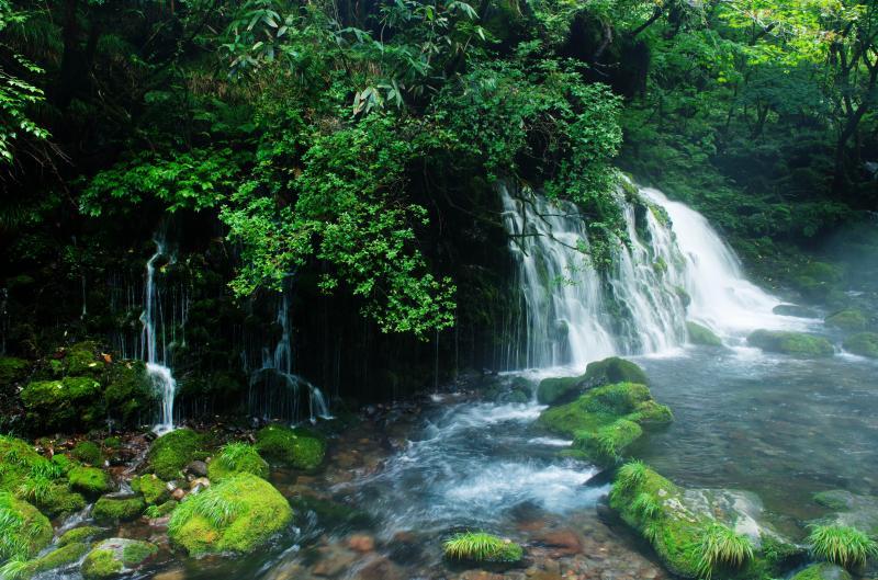 [ ミスティ ]  滝の前は真夏でもヒンヤリ。美しい伏流水はカメラマンに大人気。